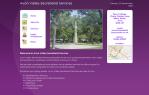 Issy Website Desgin | Avon Services